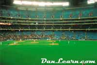 Baseball at SkyDome