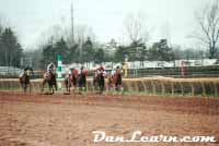 Horse racing at Fort Erie