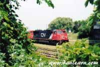 CN locomotive behind brush